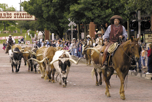 A Brief History Of Cowtown